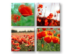 Пана за стена Meadow of poppy poppies 4- части Колаж XOBKOL17E42